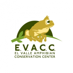El Valle Amphibian Conservation Center Logo