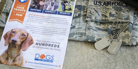 Dogs on Deployment Branding and Collateral design