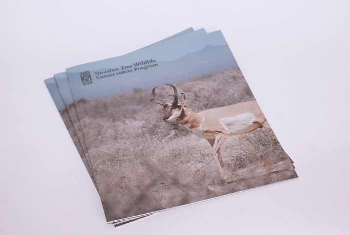 Annual report, Houston Zoo conservation annual report, annual report, zoo annual report, conservation annual report, conservation magazine, zoo magazine