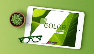 color palettes, green color palettes, color theory, Pantone colors, Pantone color of the year, green, green color combinations, color ideas, how to select colors for your brand