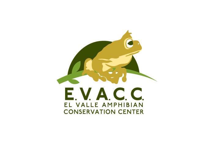 El Valle Amphibian Conservation Center logo, EVACC, Amphibian logo, zoo logo, zoo logos, frog logo, conservation logo