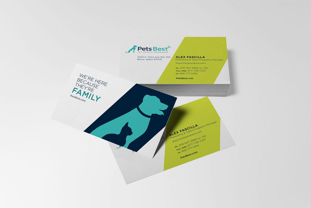 pet logos, pet branding, animal infographics, pet business card design, business card